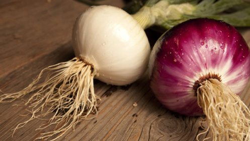 http://venturevisuals.com/case-studies/gills-onions/